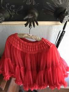 surprise petticoat